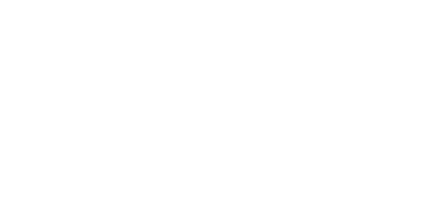221 Surfside Holdings